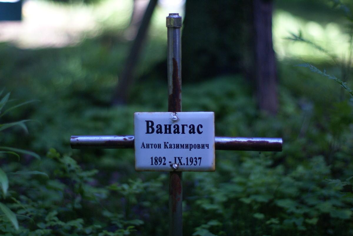Памятный крест А. К. Ванагасу. Фото 30.05.2010