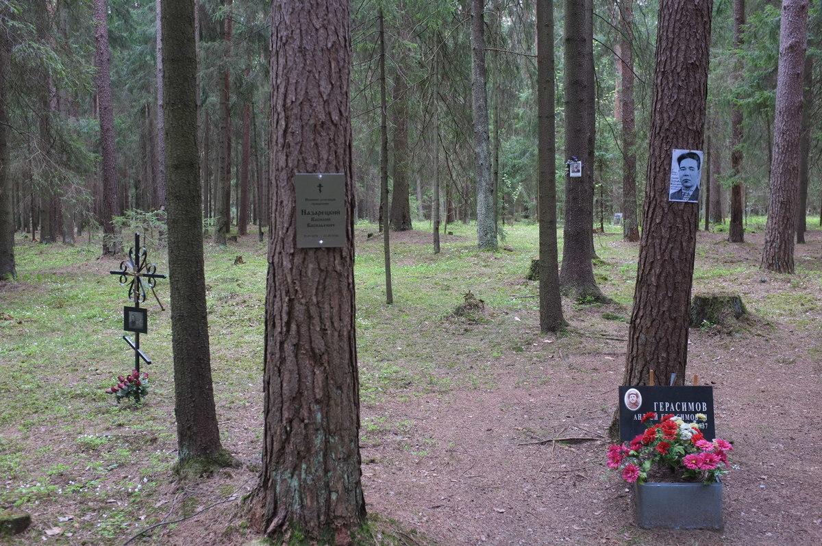 Памятная табличка В. В. Назарецкому. Фото 18.05.2017