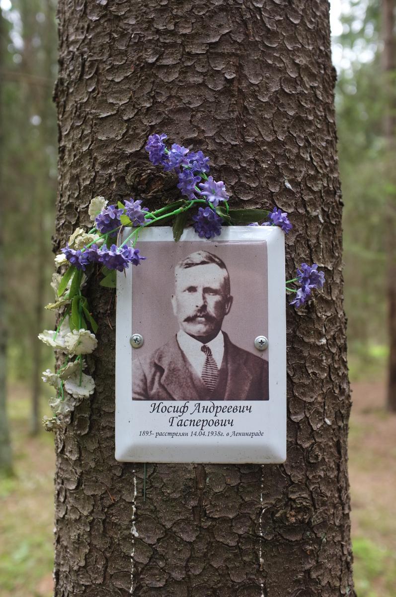 Памятная табличка И. А. Гасперовичу. Фото 18.05.2017