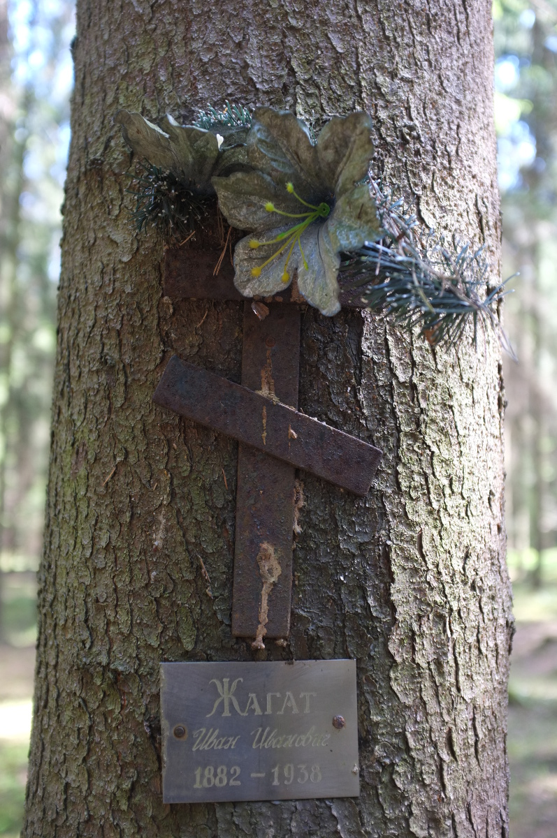 Памятная табличка И. И. Жагату. Фото 18.05.2017