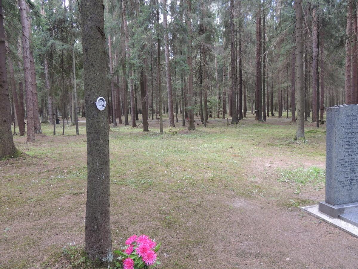 Памятная табличка А. П. Абчуку. Фото 18.05.2017