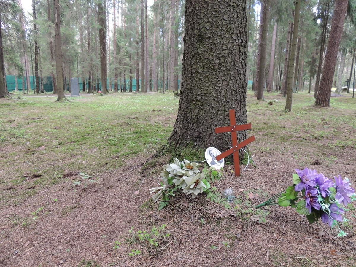 Памятная табличка И. И. Майорову. Фото 18.05.2017