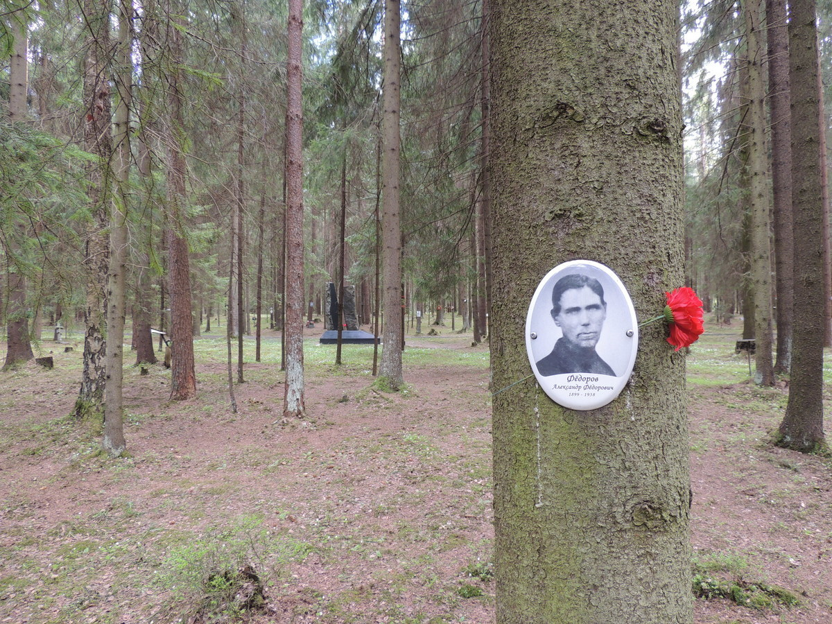 Памятная табличка А. Ф. Федорову. Фото 18.05.2017
