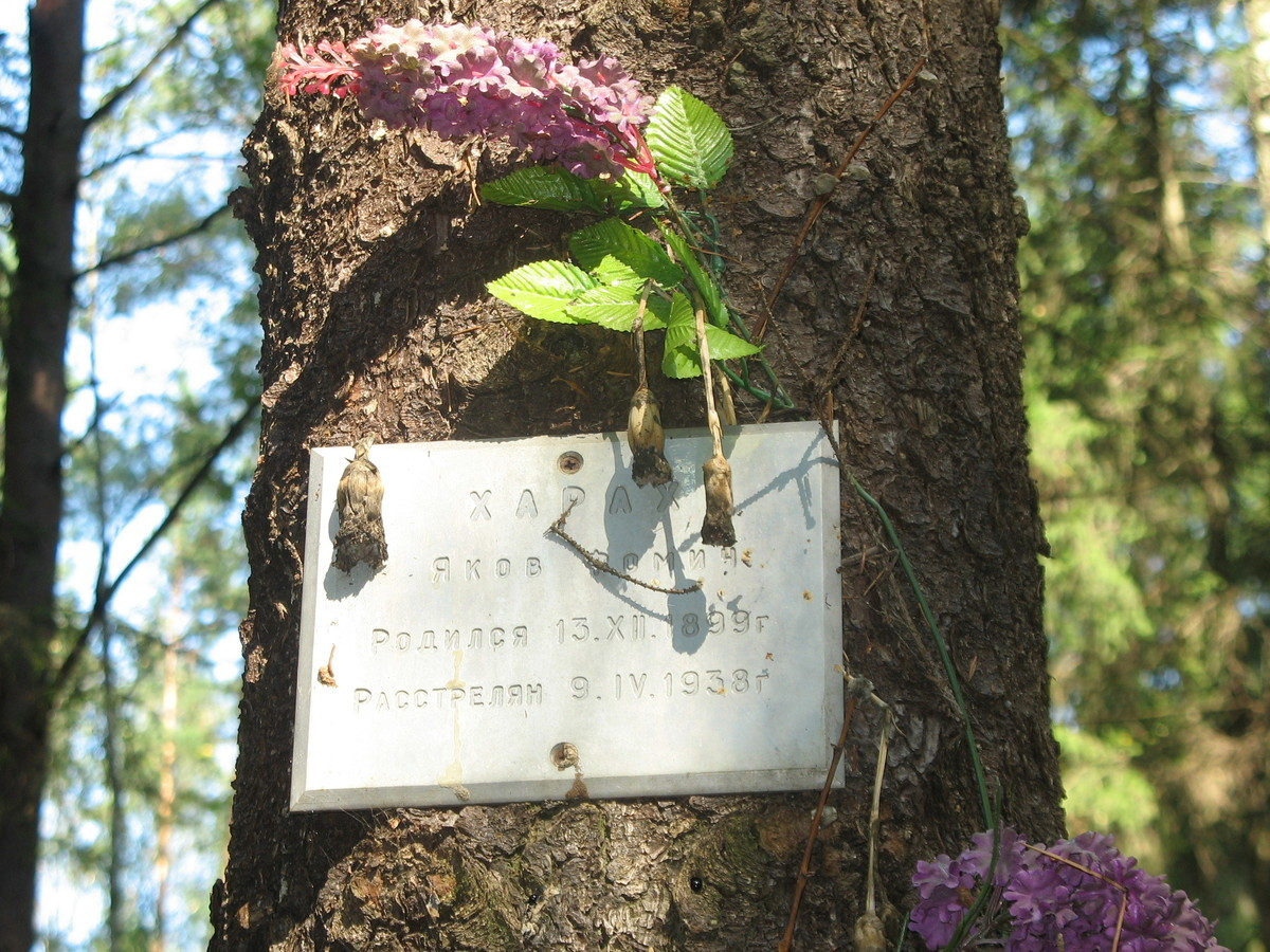 Памятная табличка Я. Ф. Хараху. Фото 23.08.2007