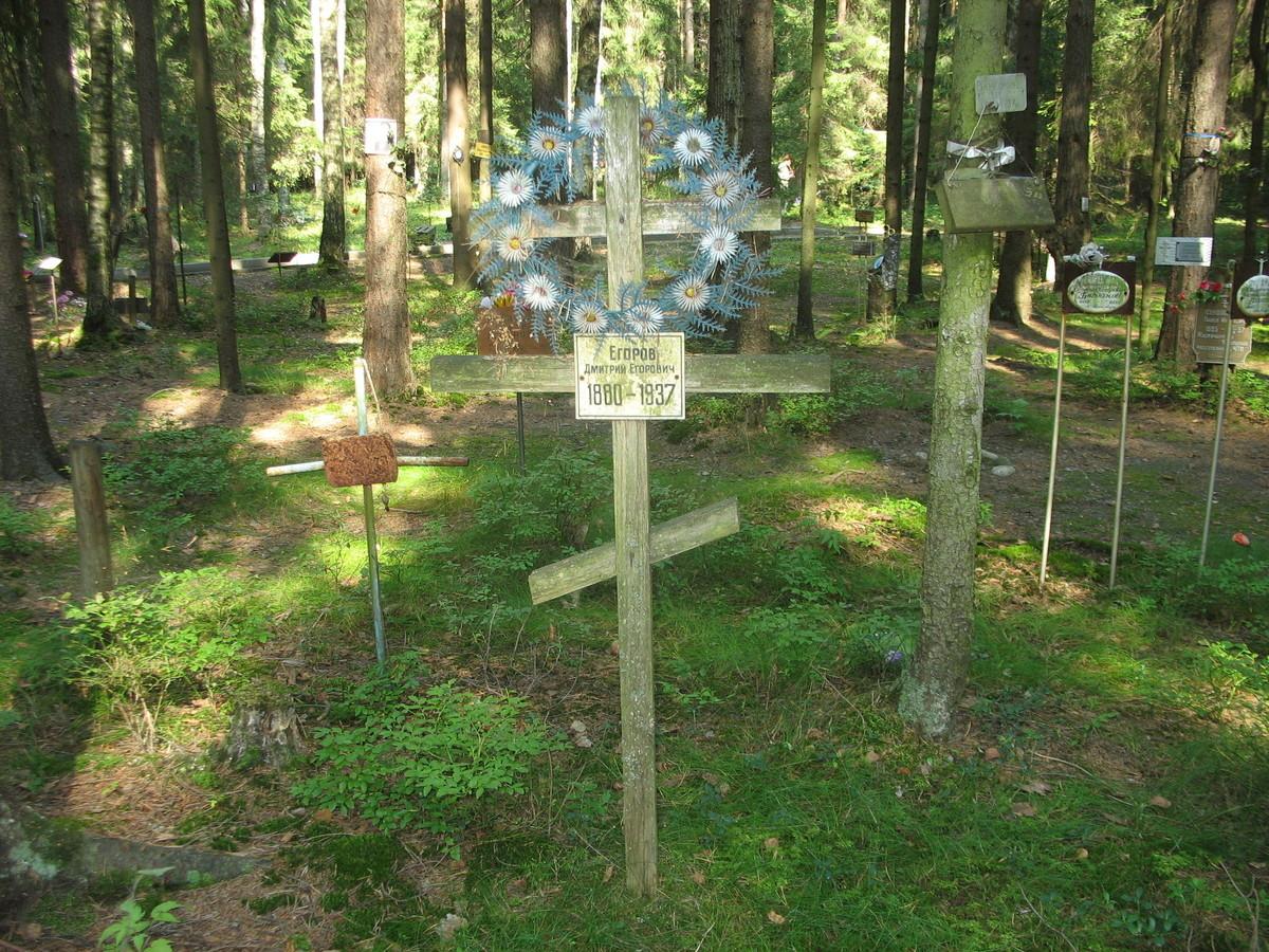 Памятный крест Д. Е. Егорову. Фото 23.08.2007