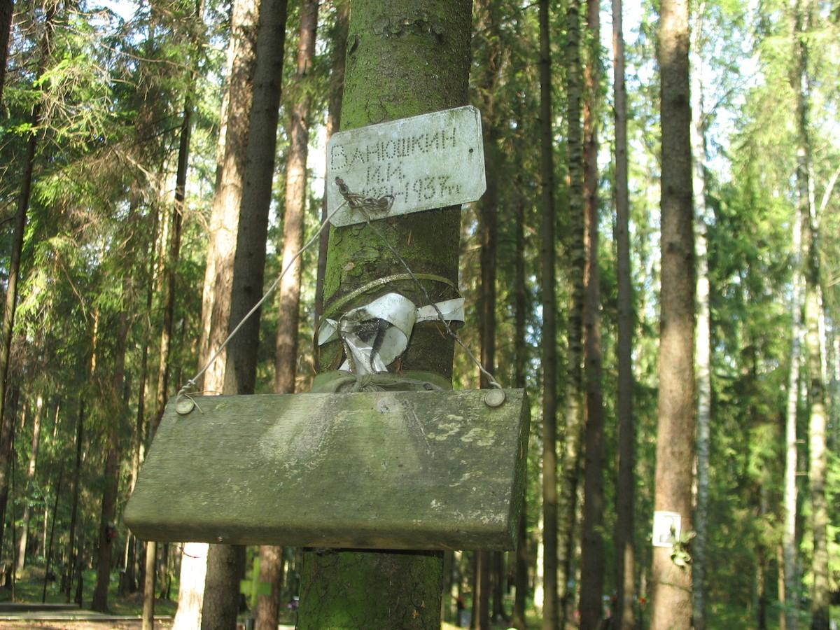 Памятная табличка И. И. Ванюшкину. Фото 23.08.2007