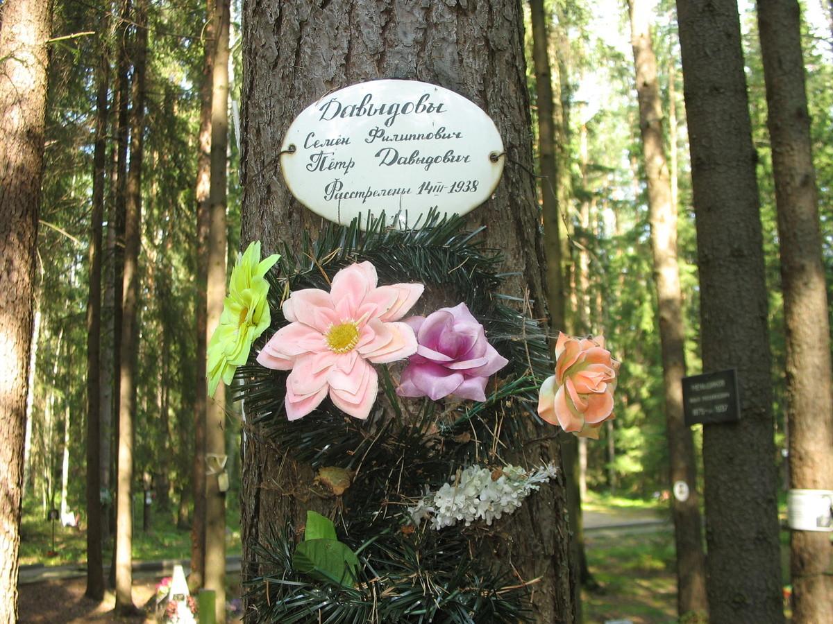 Памятная табличка С. Ф. и П. Д. Давыдовым. Фото 23.08.2007