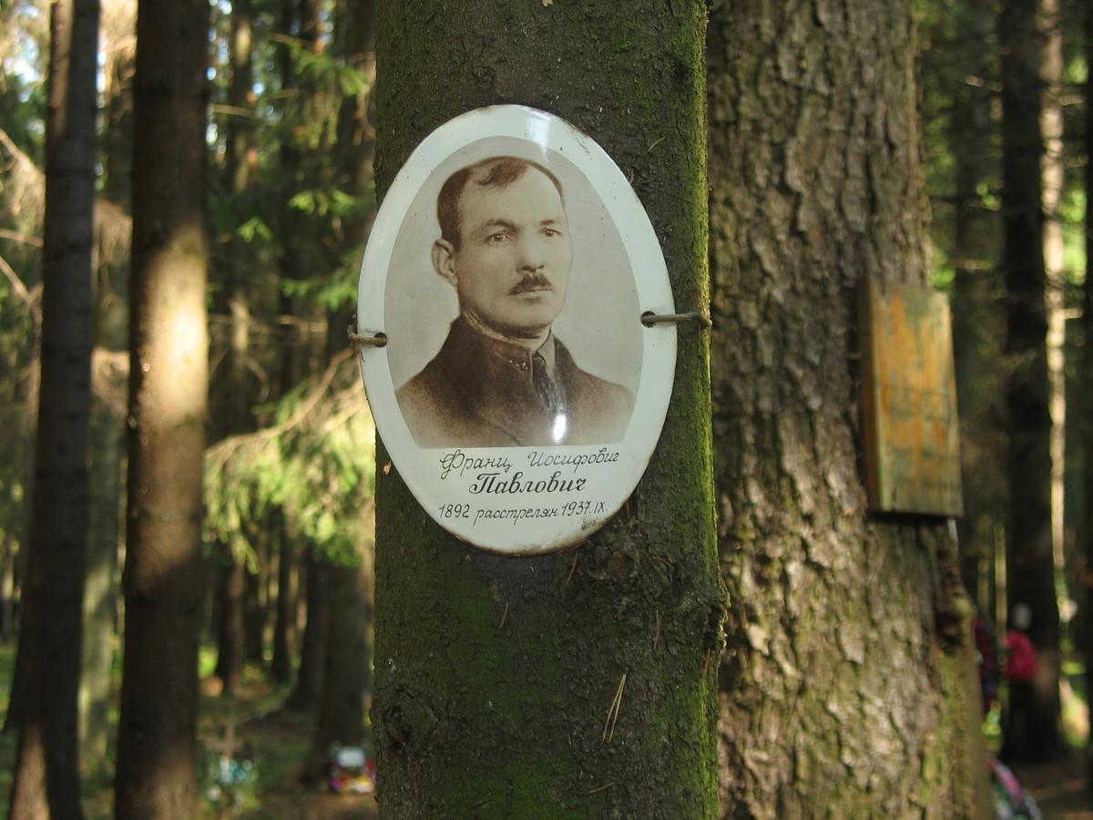 Памятная табличка Ф. И. Павловичу. Фото 23.08.2007