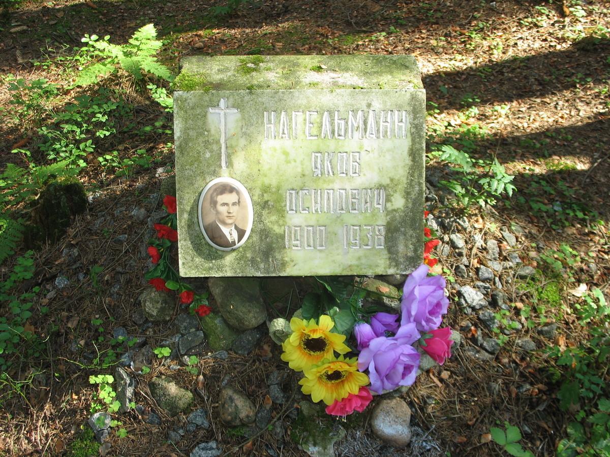 Символическое надгробие Я. О. Нагельманна. Фото 23.08.2007