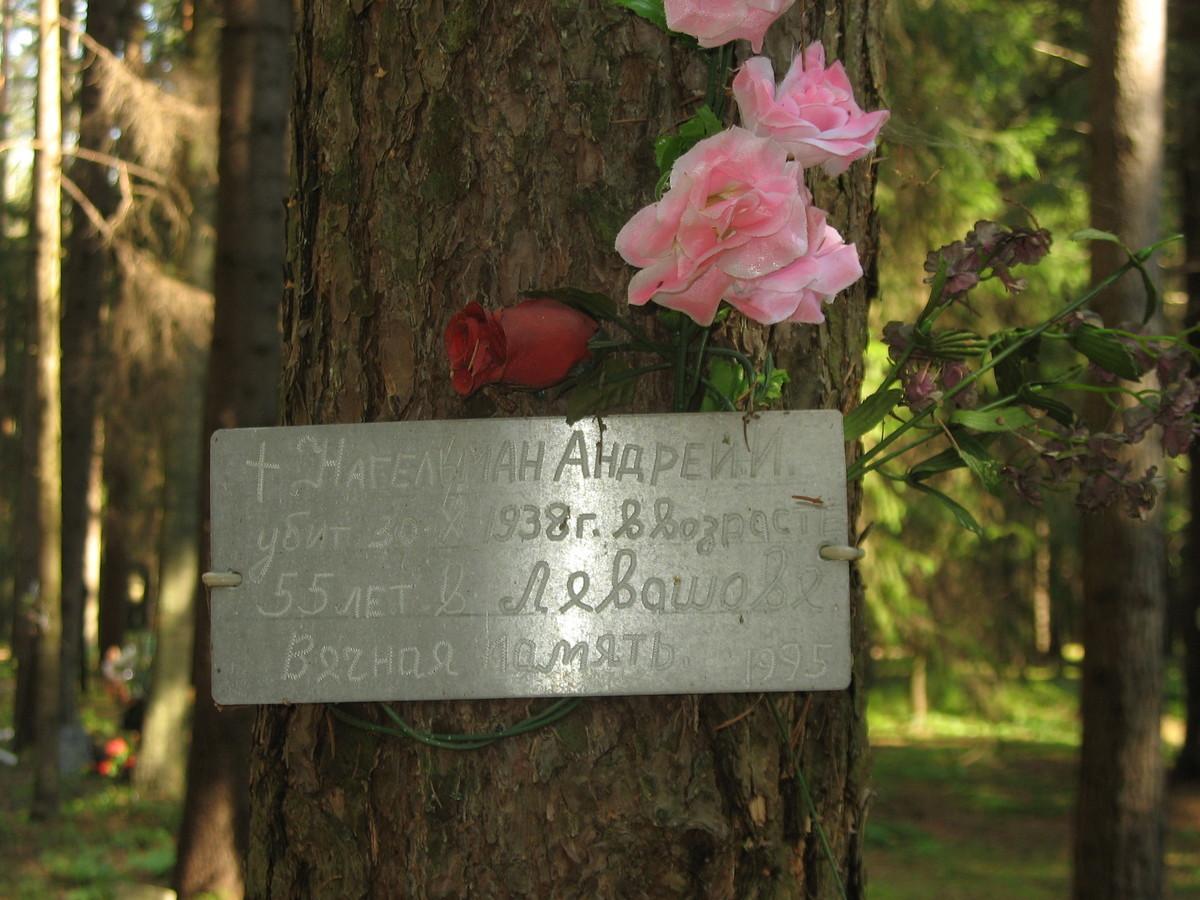 Памятная табличка А. И. Нагельману. Фото 23.08.2007