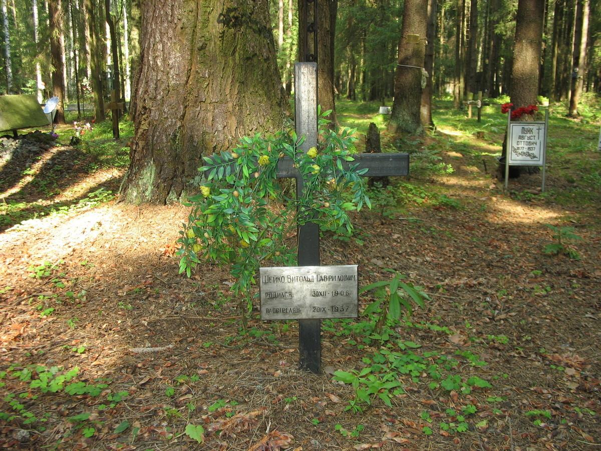 Памятный крест В. Г. Шейко. Фото 23.08.2007
