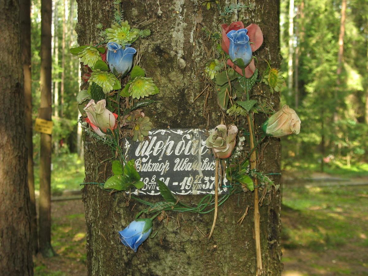 Памятная табличка В. И. Щербачу. Фото 23.08.2007