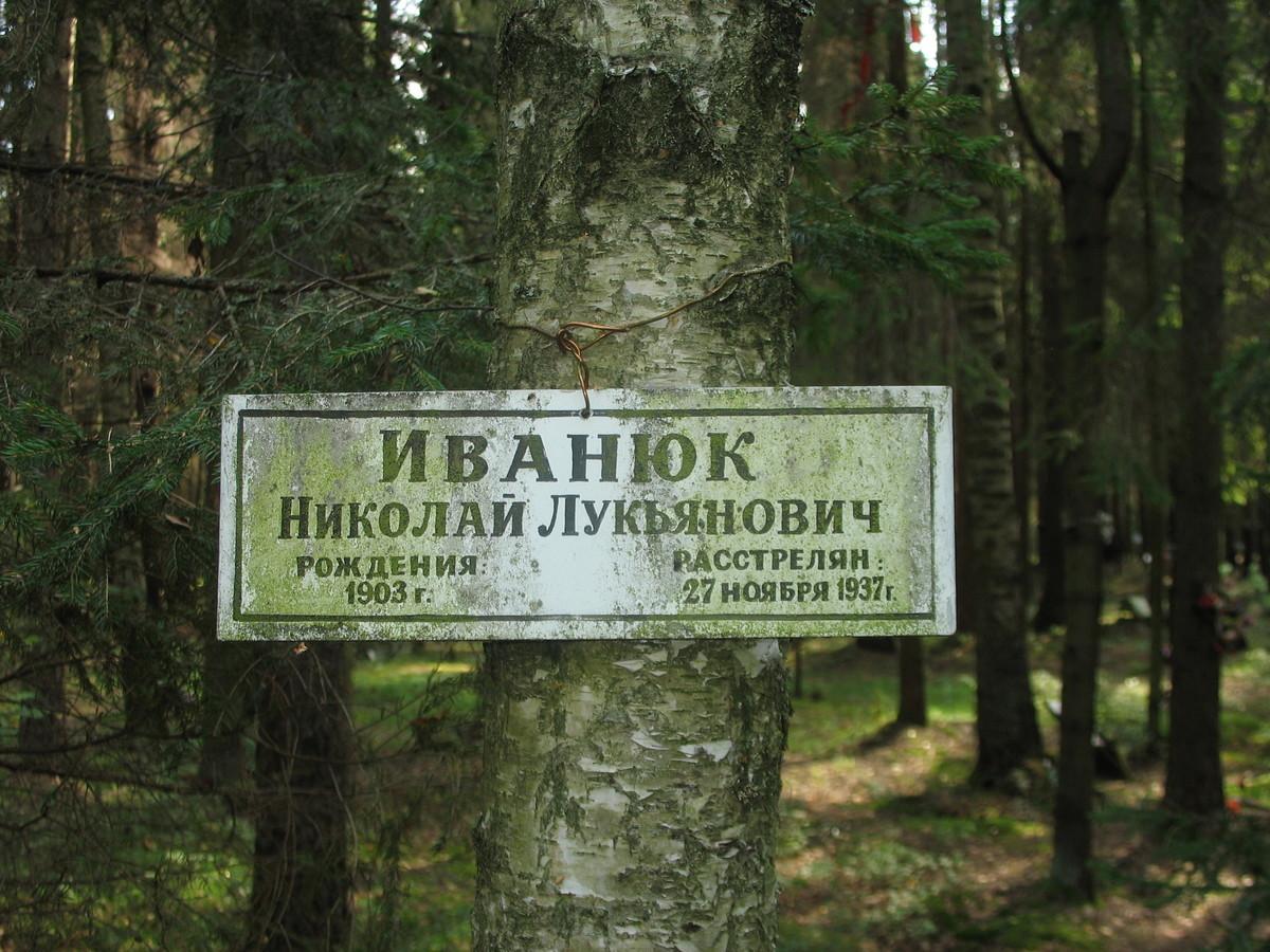 Памятная табличка Н. Л. Иванюку. Фото 23.08.2007