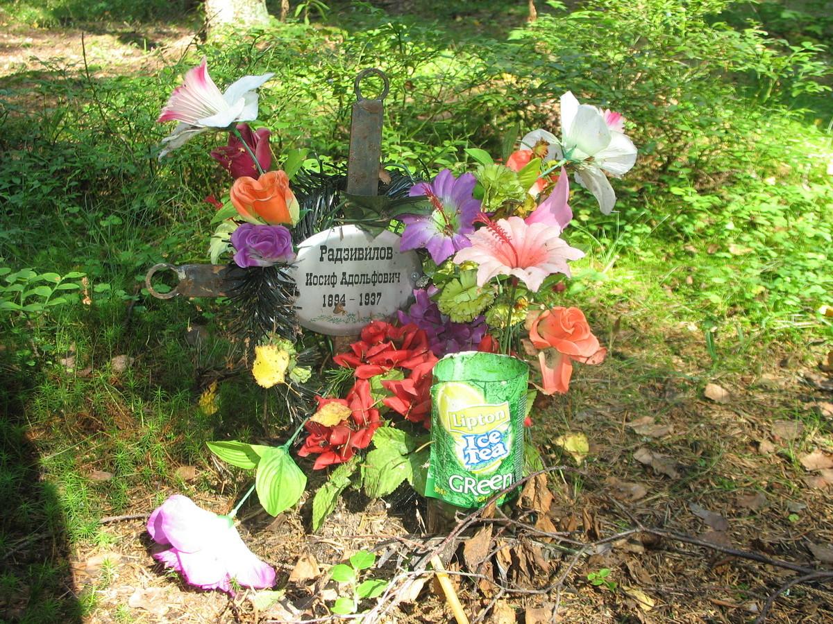 Памятный крест И. А. Радзивилову. Фото 23.08.2007
