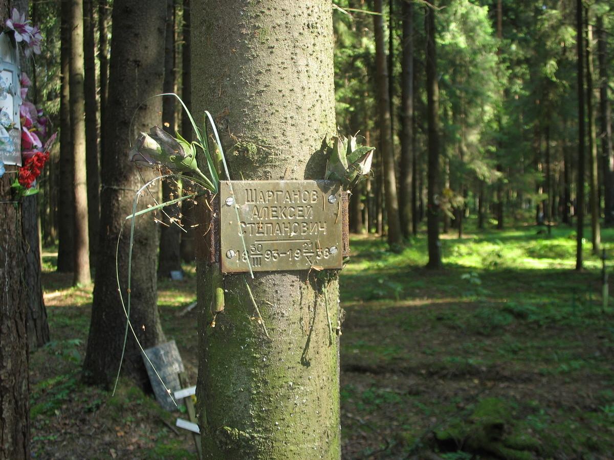 Памятная табличка А. С. Шарганову. Фото 23.08.2007