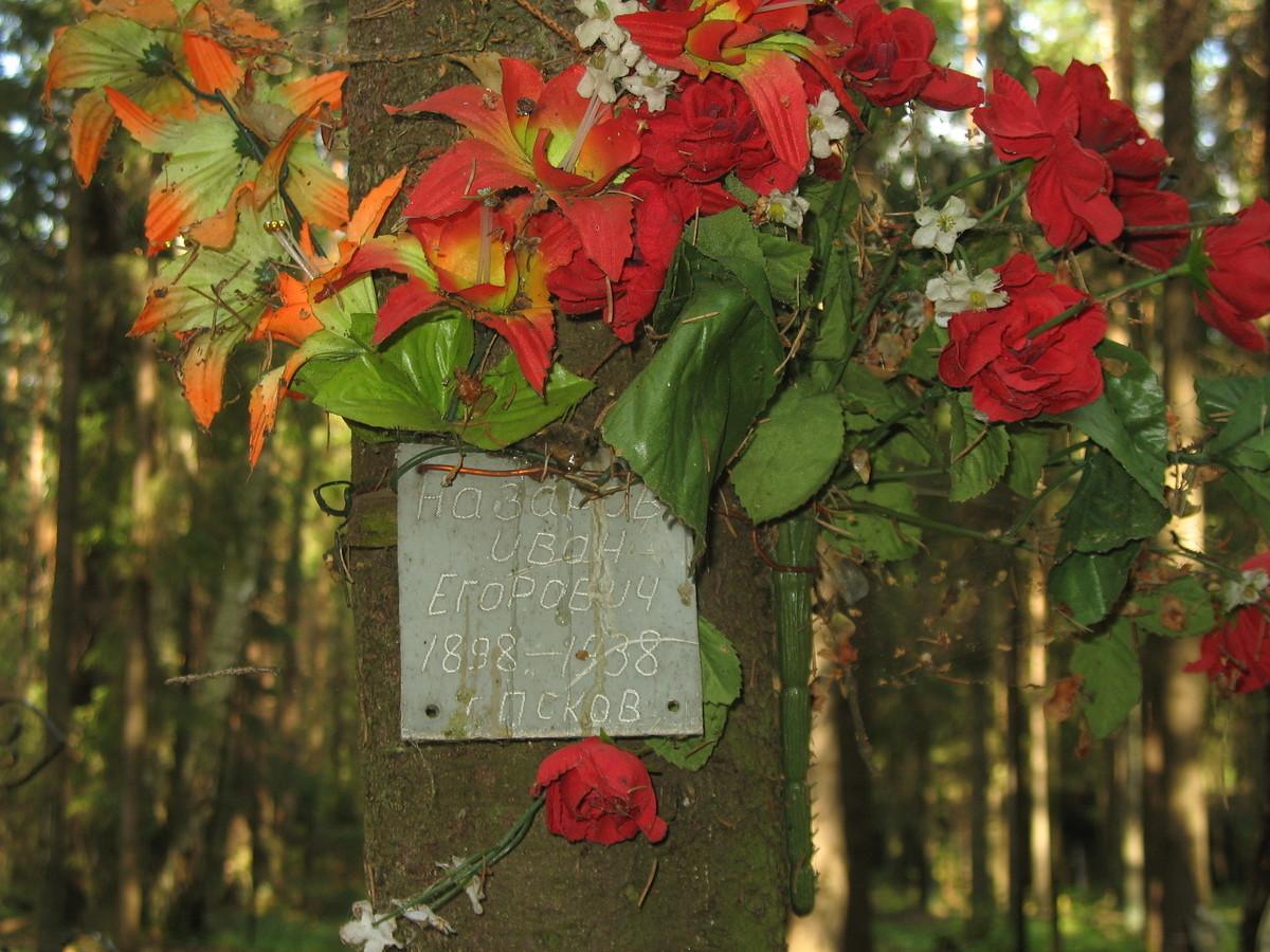 Памятная табличка И. Е. Назарову. Фото 23.08.2007