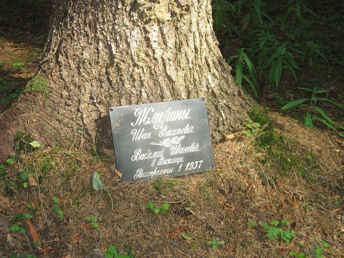 Памятная табличка И. В. и В. И. Жмуриным. Фото 23.08.2007
