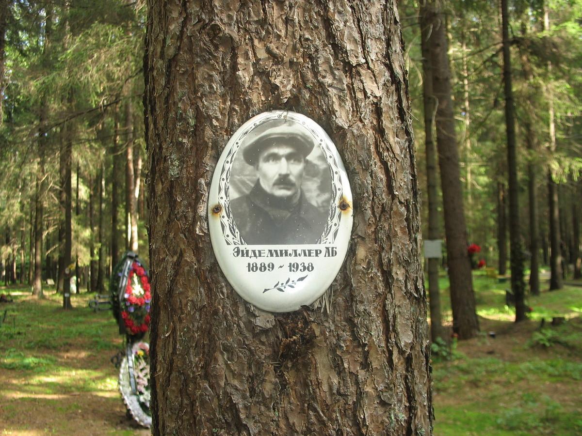 Памятная табличка А. Б. Эйдемиллеру. Фото 23.08.2007