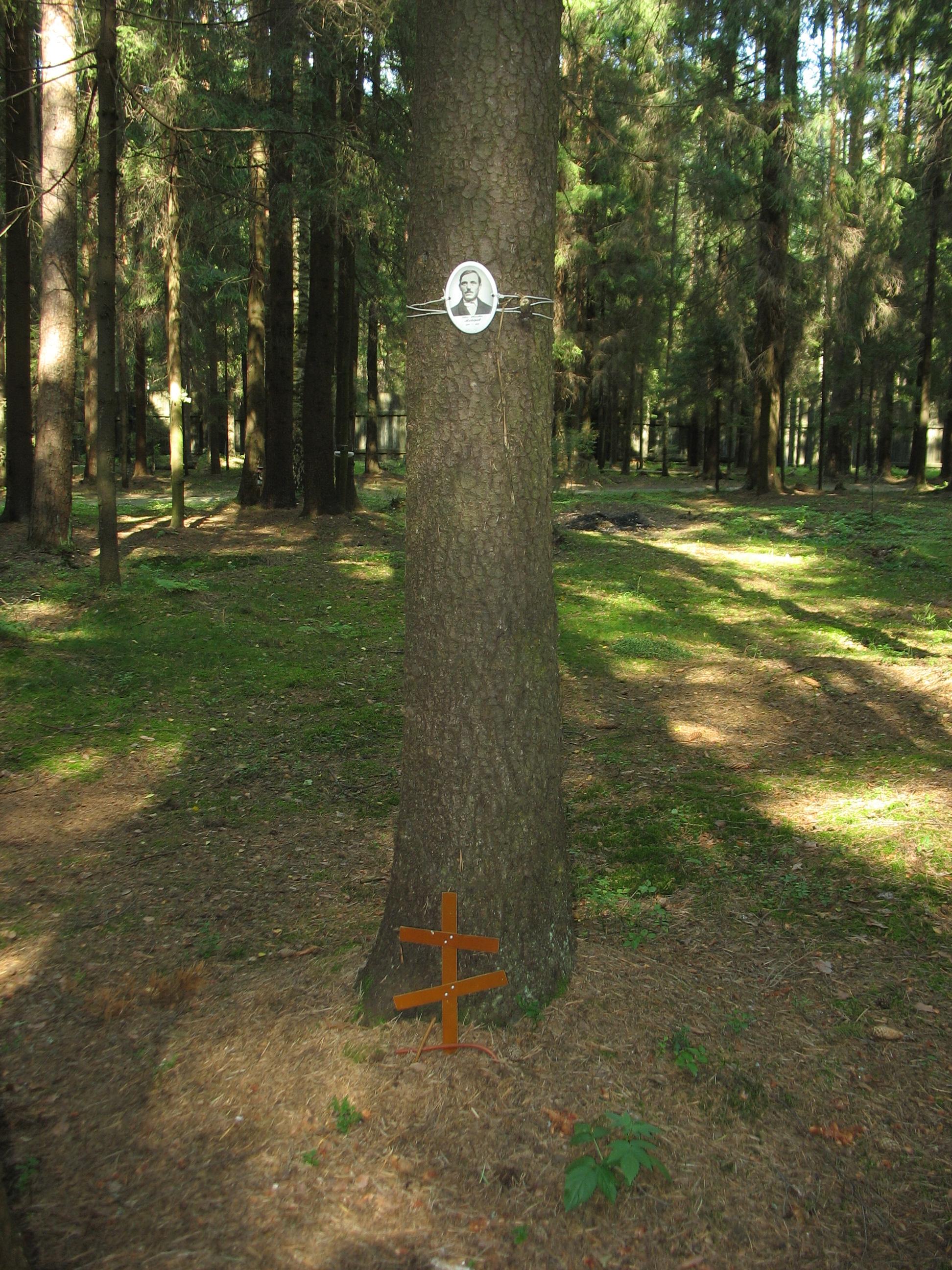 Памятная табличка И. И. Майорову. Фото 23.08.2007
