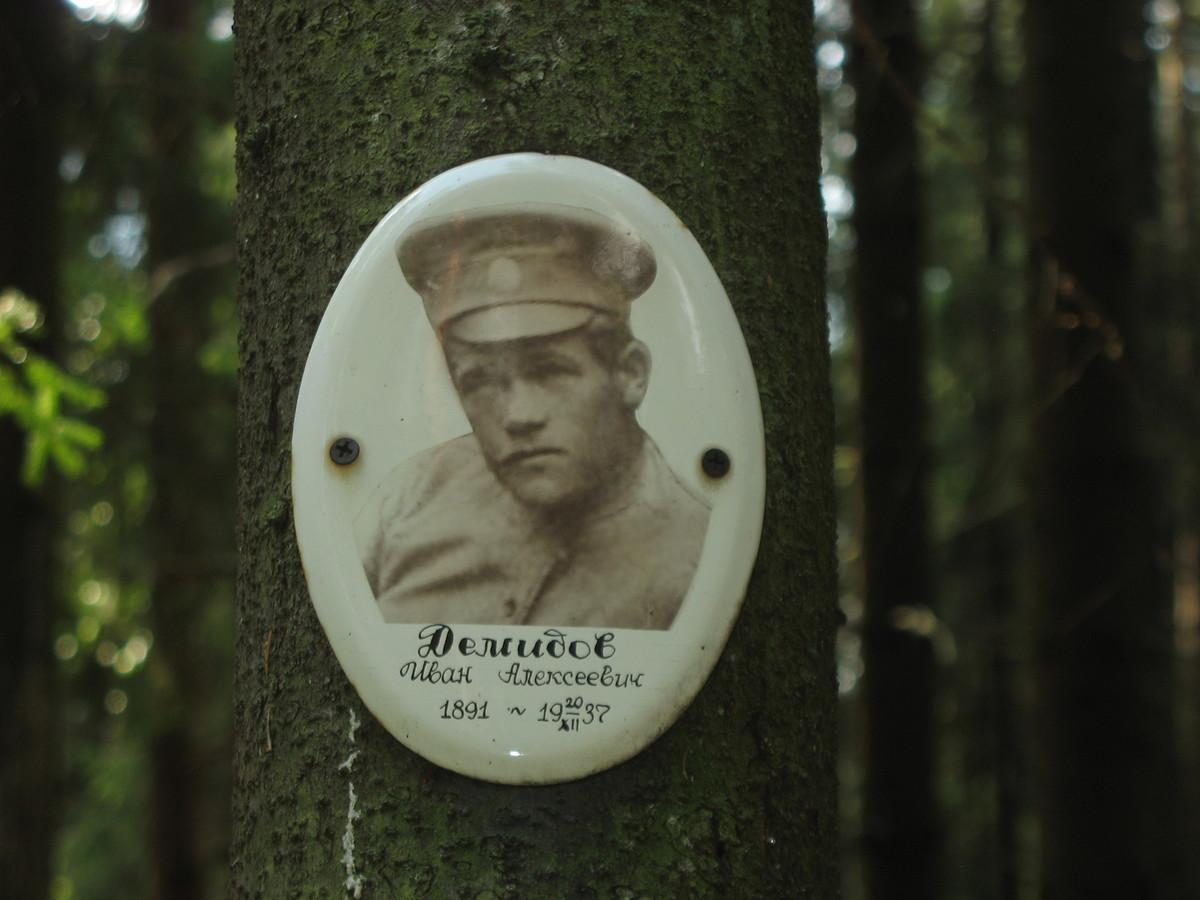 Памятная табличка И. А. Демидову. Фото 23.08.2007
