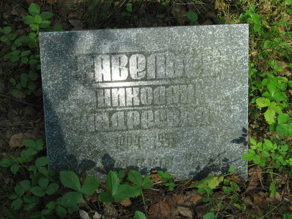 Символическое надгробие Н. А. Савельева. Фото 23.08.2007