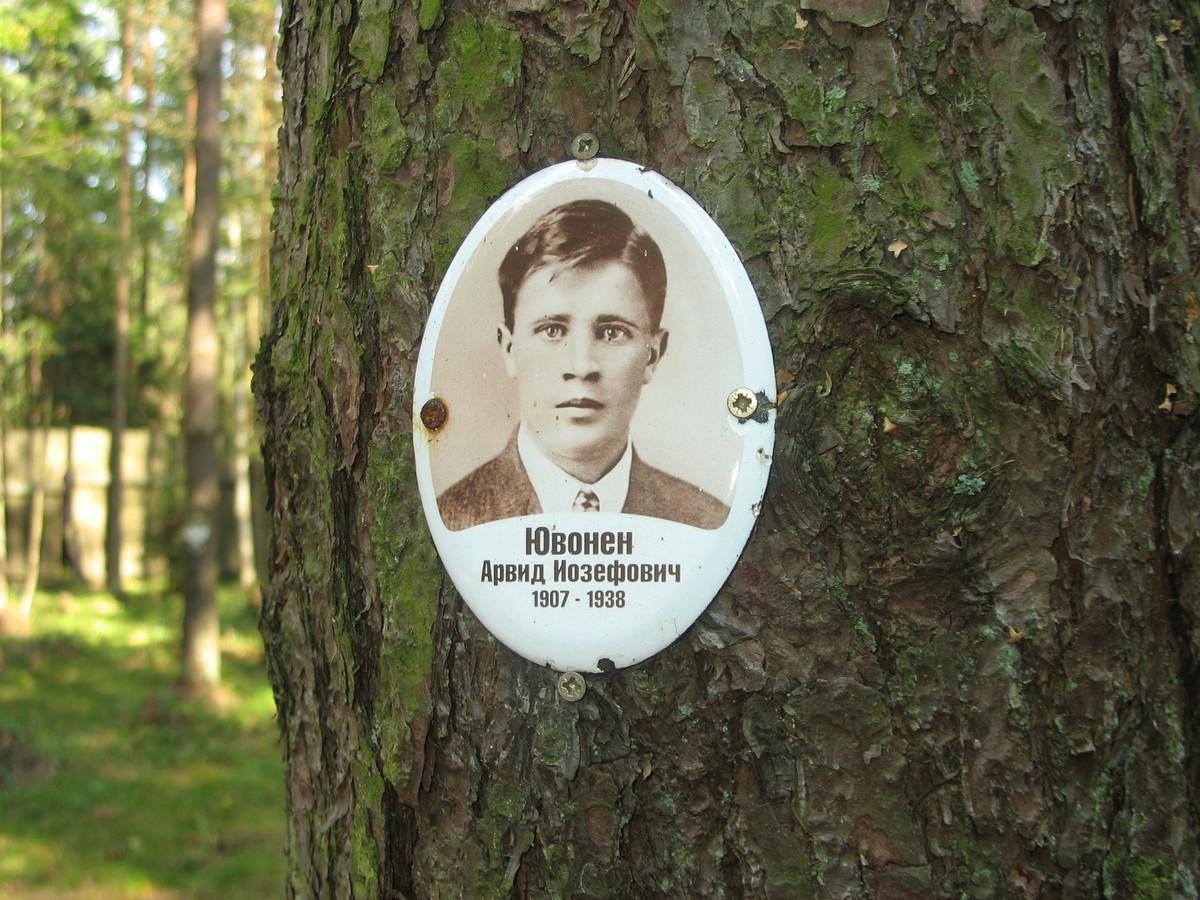 Памятная табличка А. И. Ювонену. Фото 23.08.2007