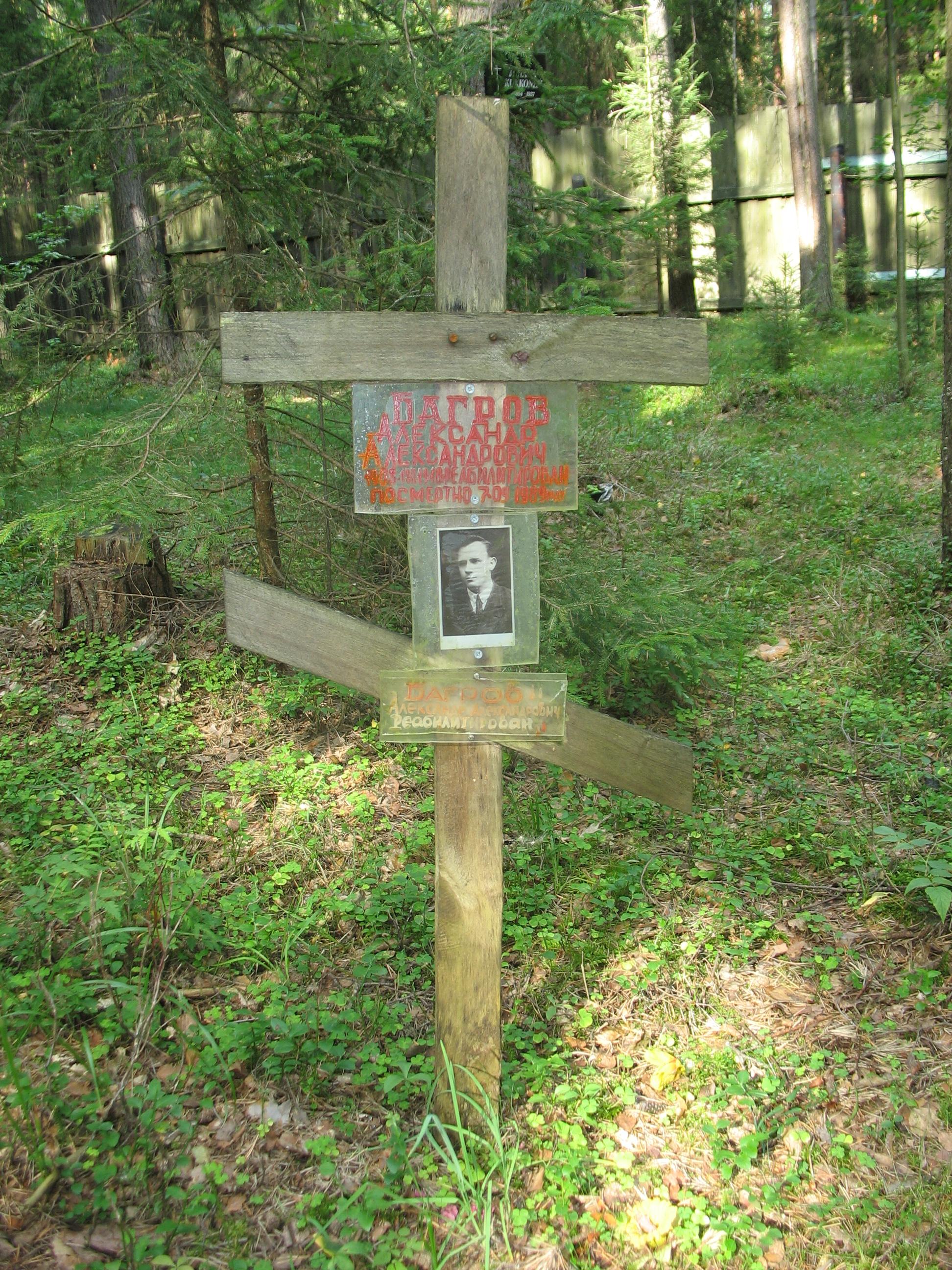 Памятный крест А. А. Багрову (в настоящее время утрачен). Фото 23.08.2007
