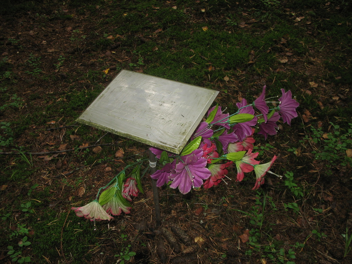 Памятная табличка П. Е. Павлову. Фото 25.08.2007