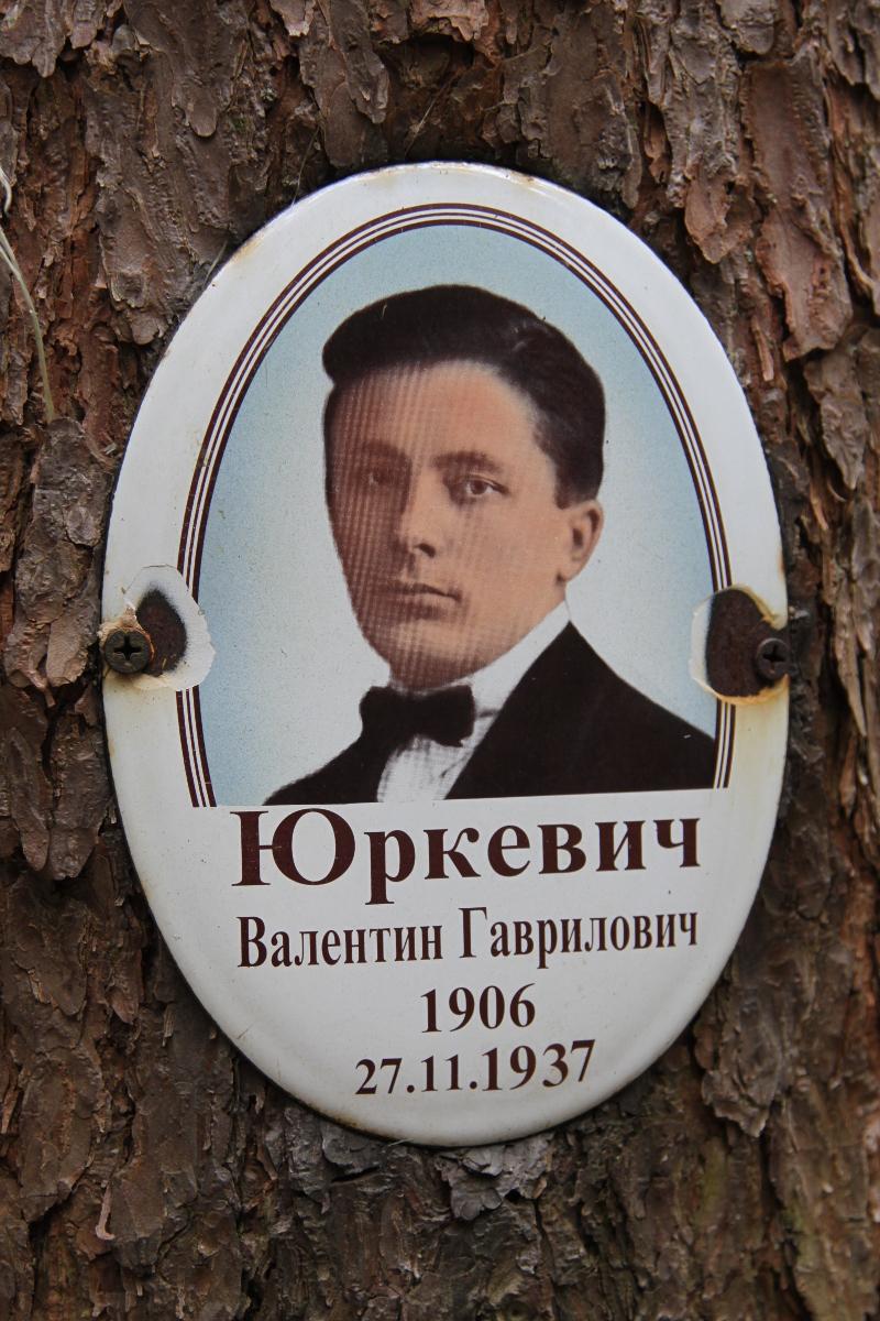 Памятная табличка В. Г. Юркевичу. Фото 05.06.2017