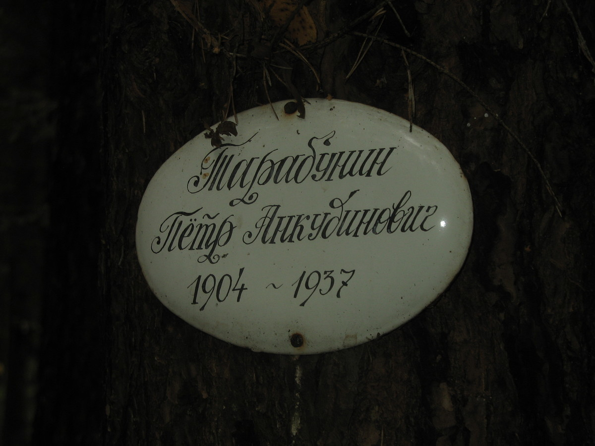 Памятная табличка П. А. Тарабунину. Фото 25.08.2007