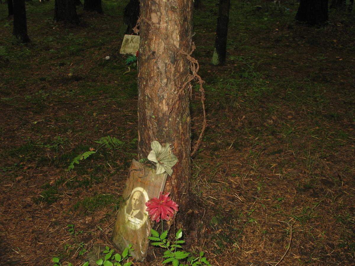 Памятная табличка П. И. Захаркову. Фото 25.08.2007