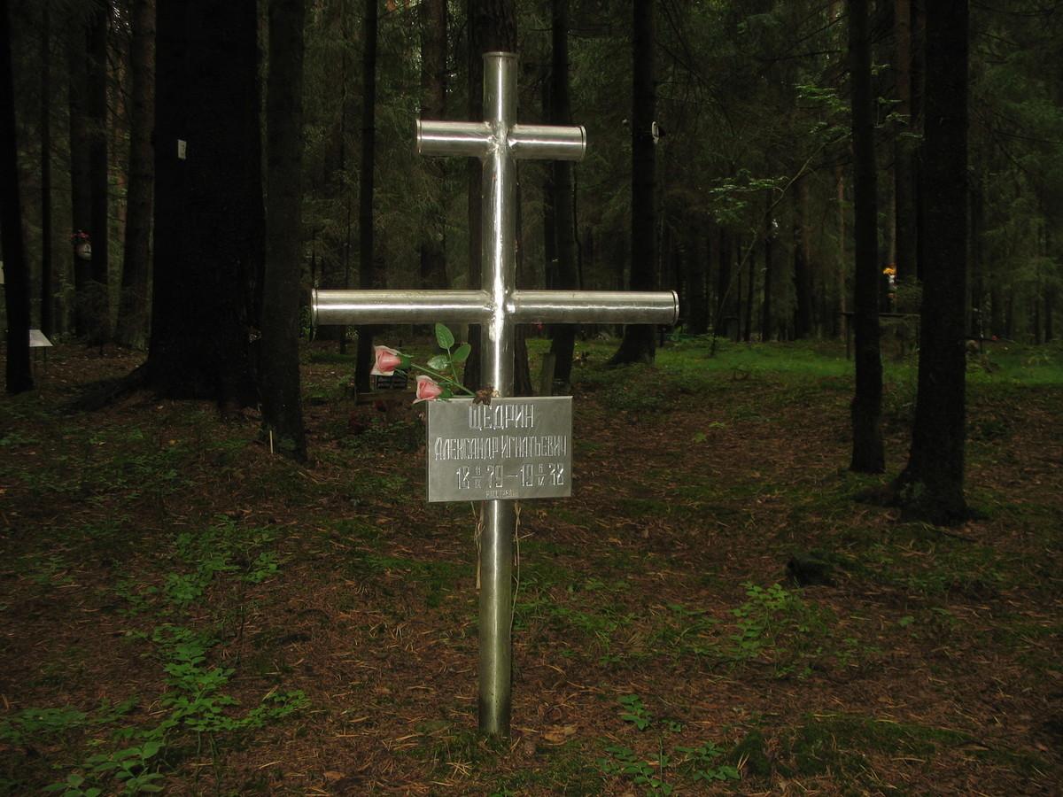 Памятный крест А. И. Щедрину. Фото 23.08.2007