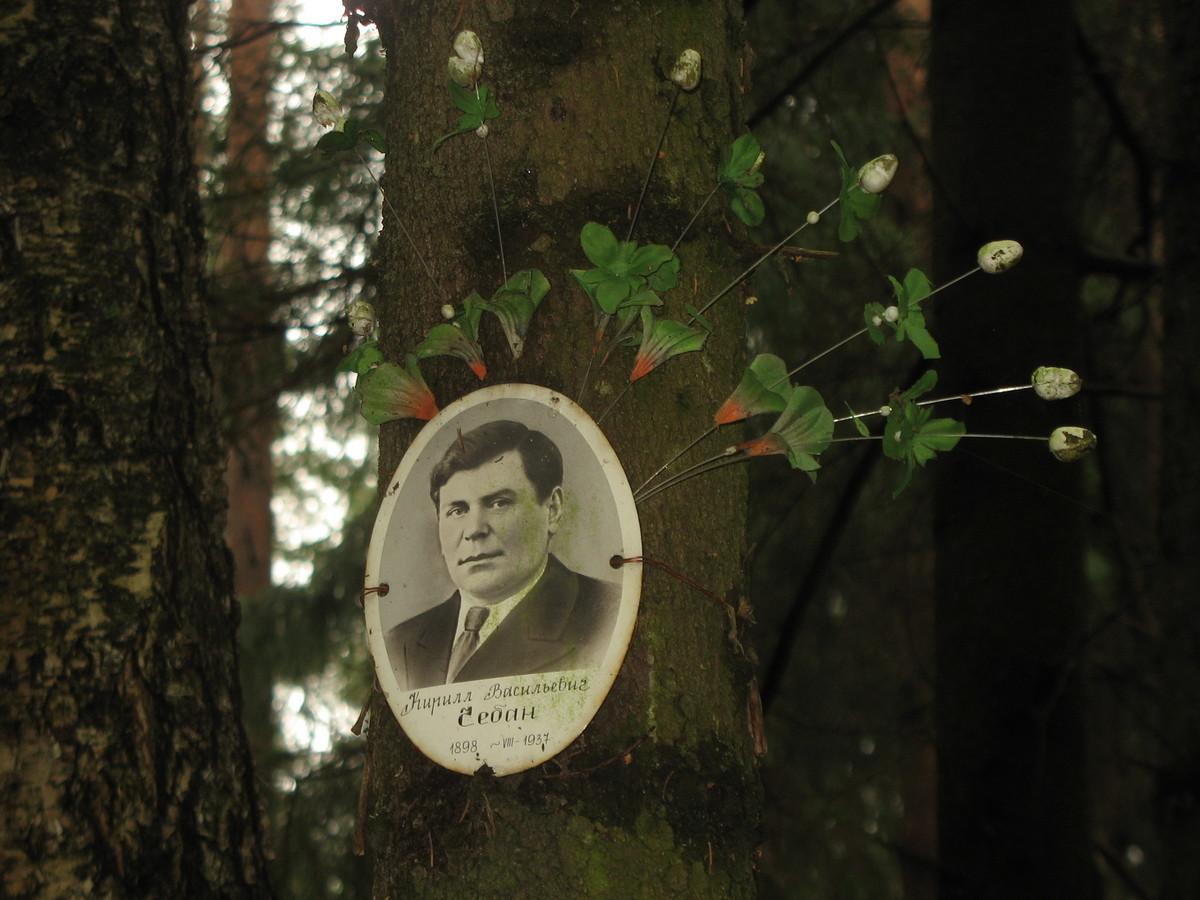 Памятная табличка К. В. Чебану. Фото 25.08.2007
