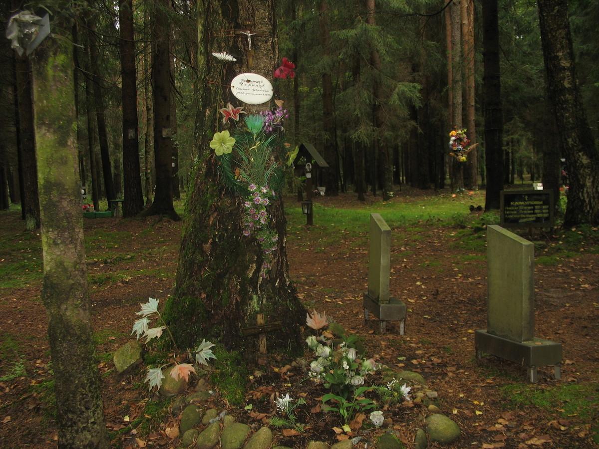 Памятная табличка С. И. Черняеву. Фото 25.08.2007