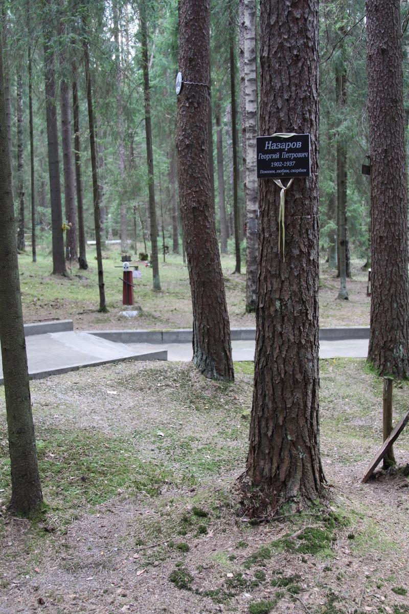Памятная табличка Г. П. Назарову. Фото 05.06.2017