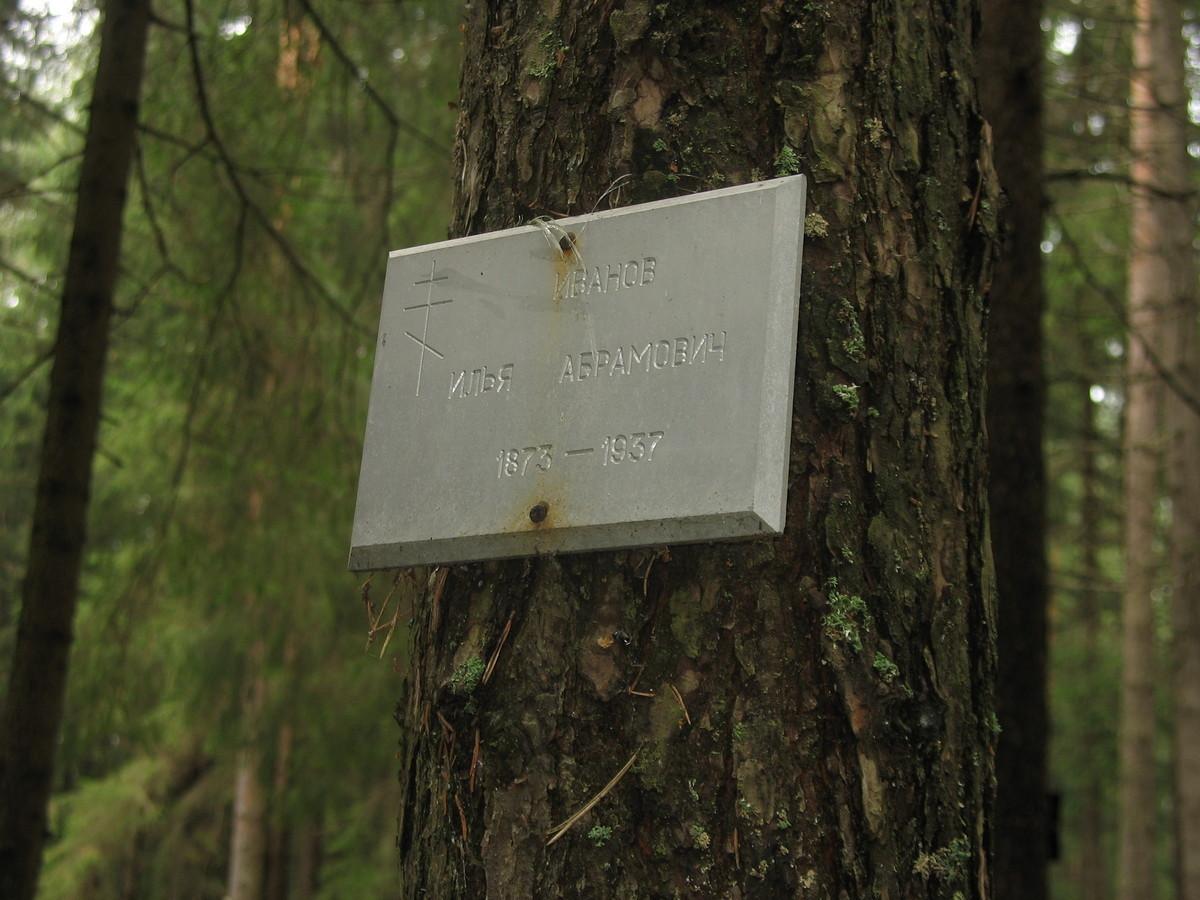 Памятная табличка И. А. Иванову. Фото 25.08.2007