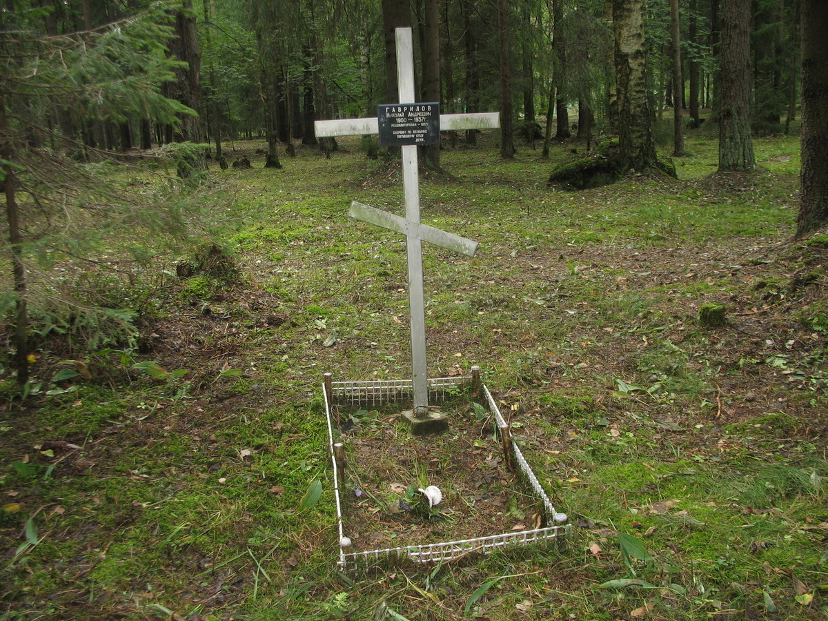 Памятный крест Н. А. Гаврилову. Фото 23.08.2007