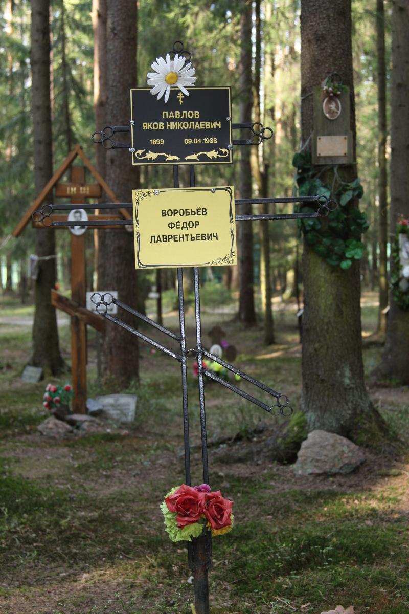 Памятный крест Я. Н. Павлову и Ф. Л. Воробьеву. Фото 05.06.2017