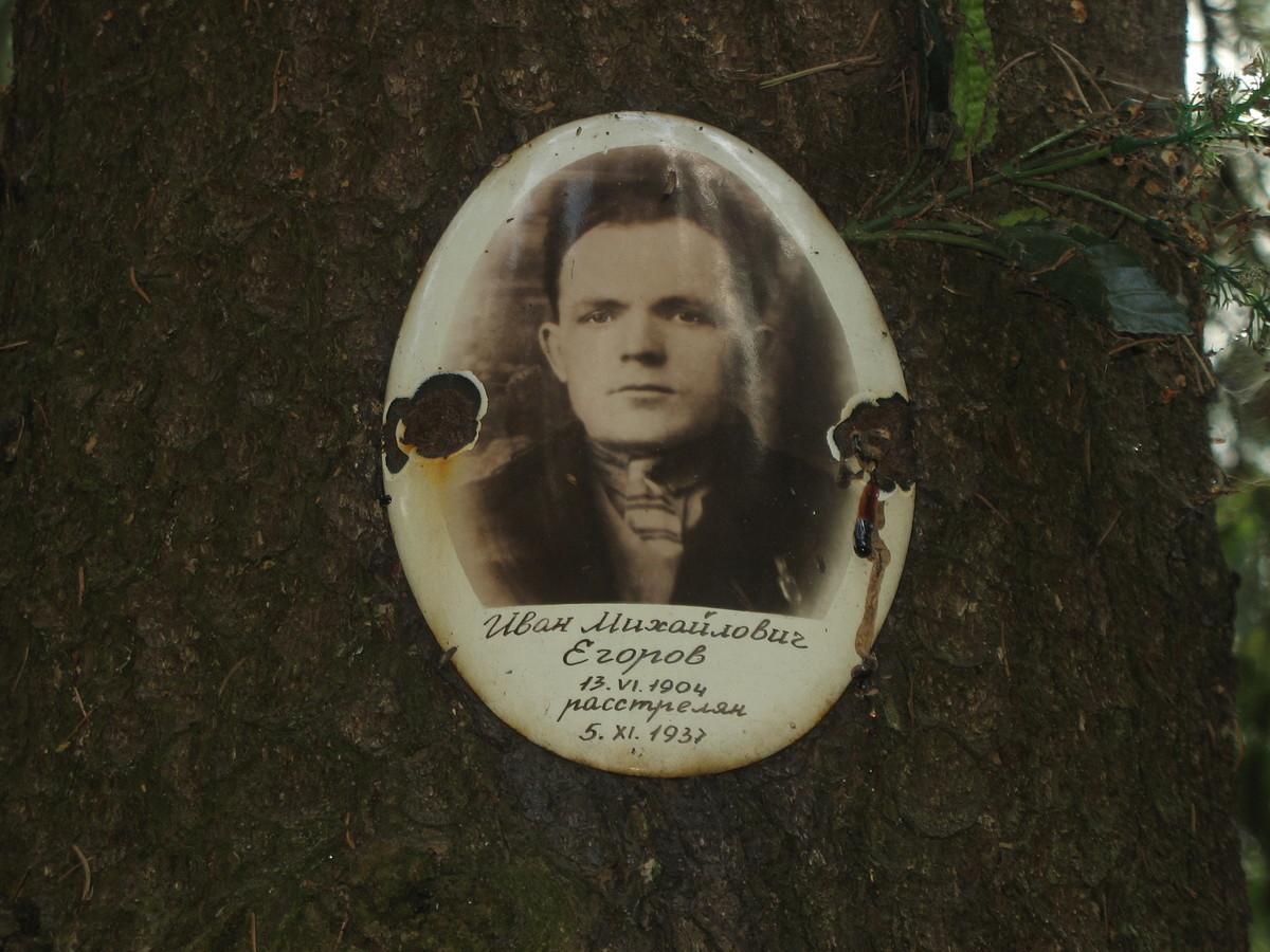 Памятная табличка И. М. Егорову. Фото 25.08.2007