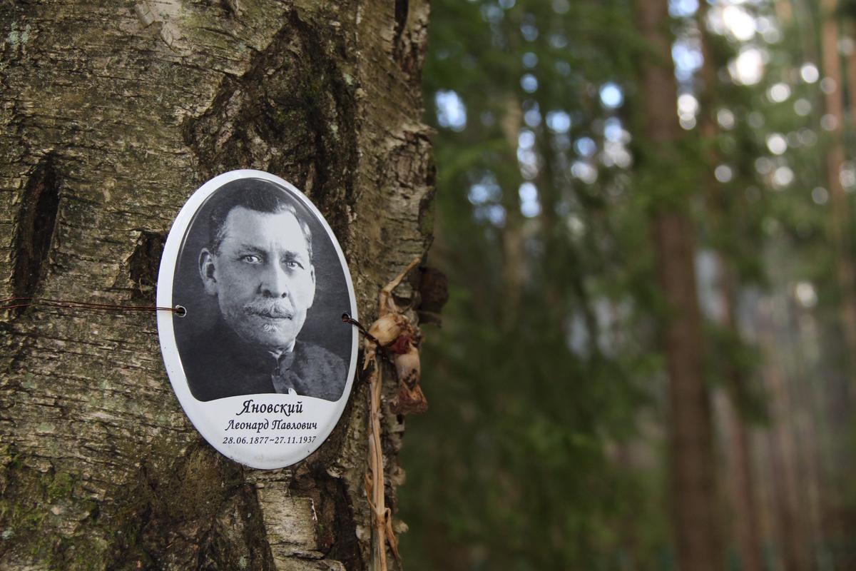 Памятная табличка Л. П. Яновскому. Фото 05.06.2017