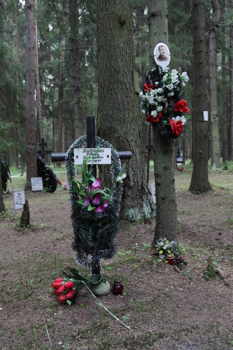 Памятный крест Ф. И. Павловичу. Фото 18.05.2017