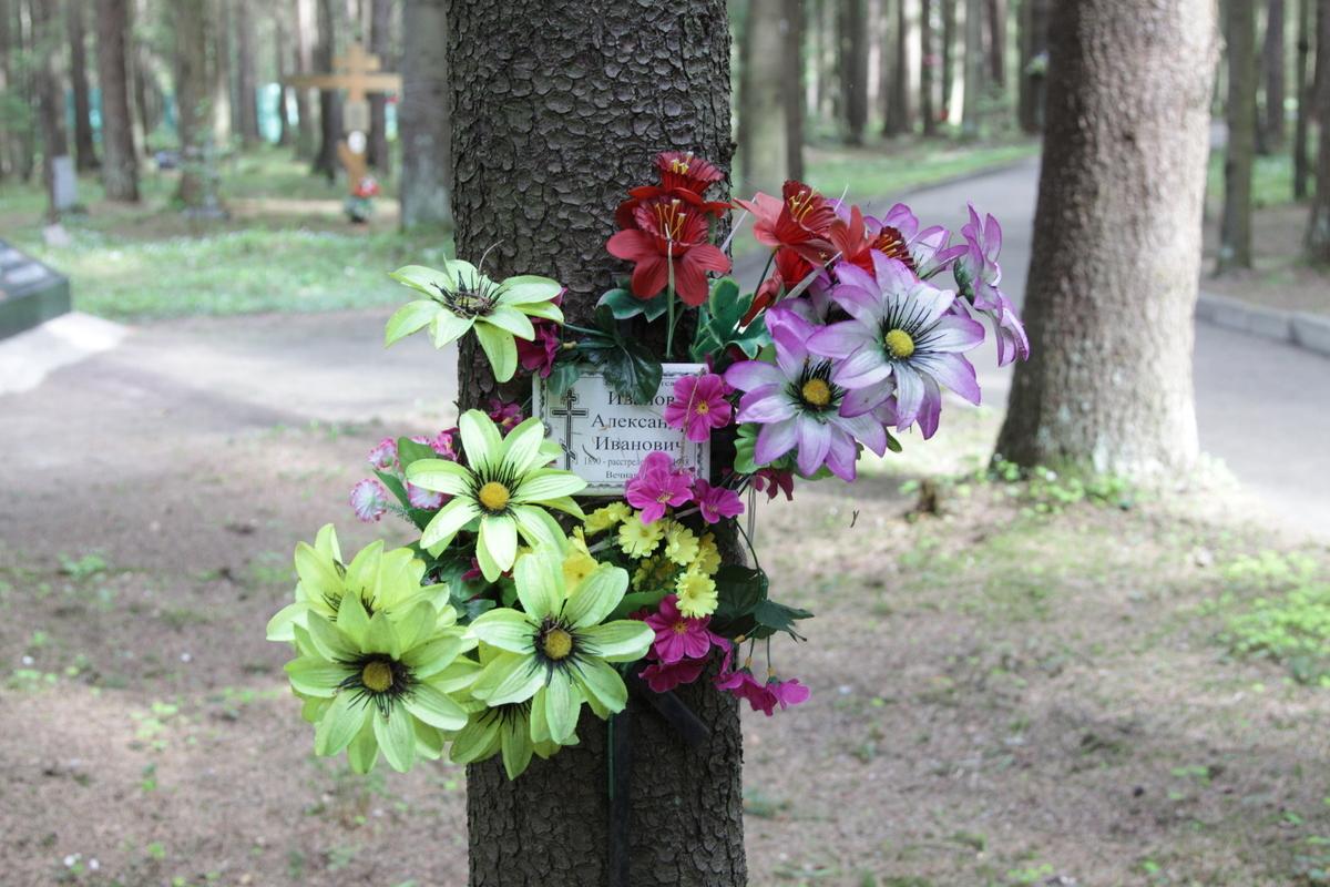 Памятный знак А. И. Иванову. Фото 05.06.2017