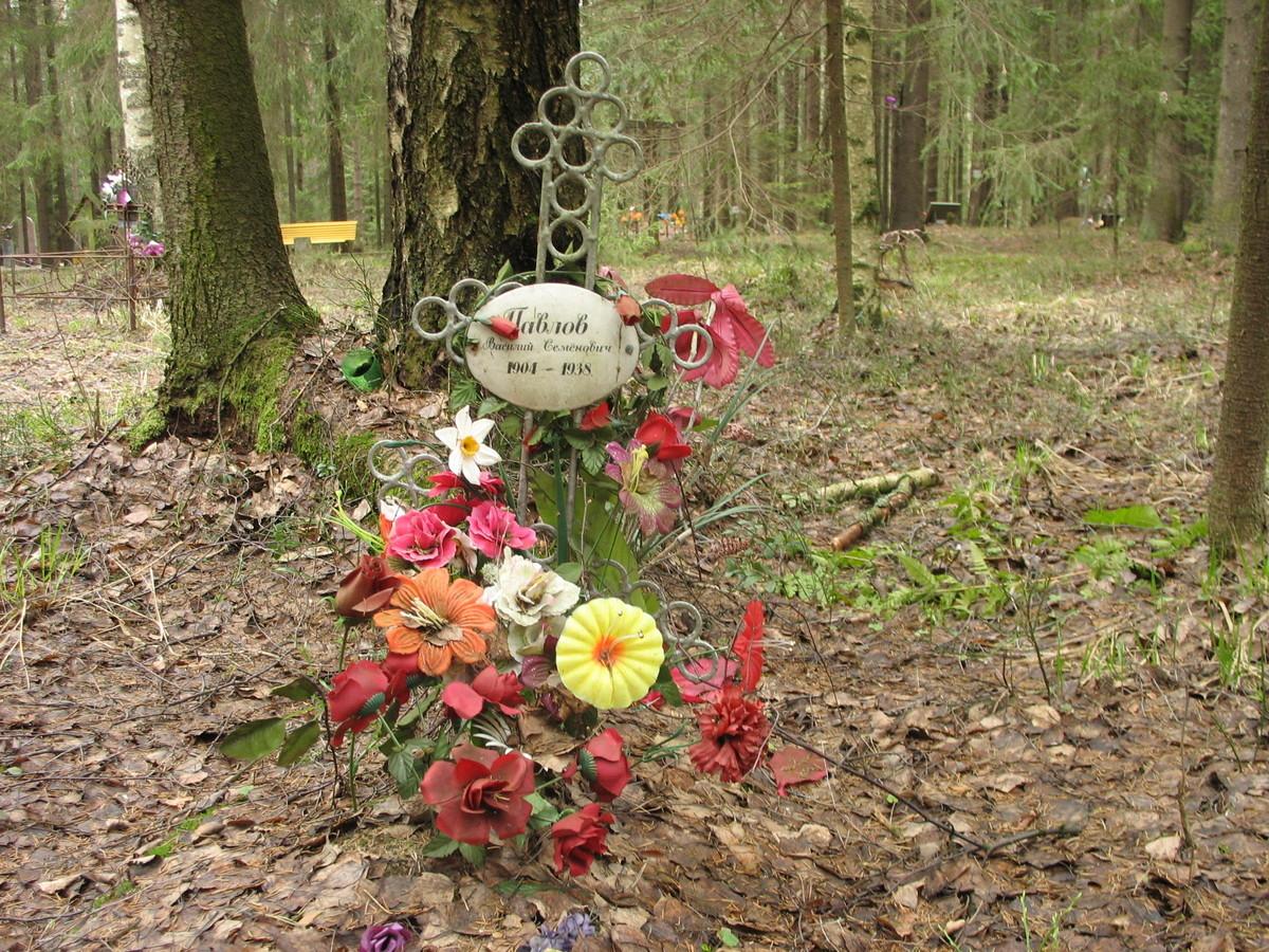 Памятный крест В. С. Павлову. Фото 22.04.2007