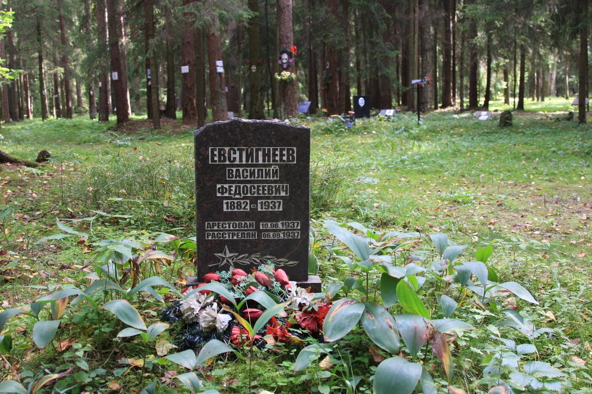 Символическое надгробие В. Ф. Евстигнеева. Фото 02.09.2017