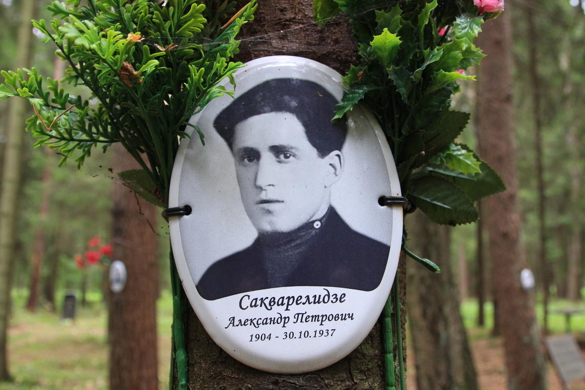 Памятная табличка А. П. Сакварелидзе. Фото 02.09.2017