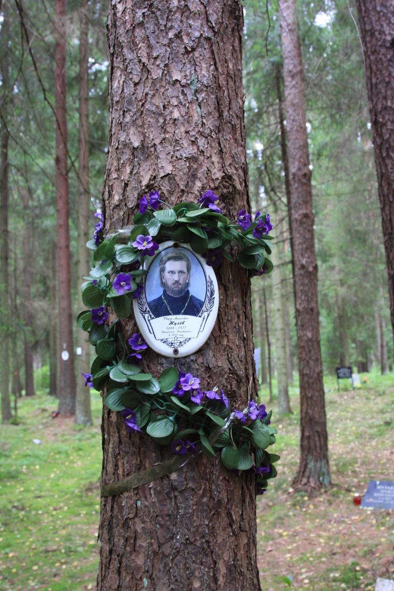 Памятная табличка Ф. А. Жулеву. Фото 02.09.2017