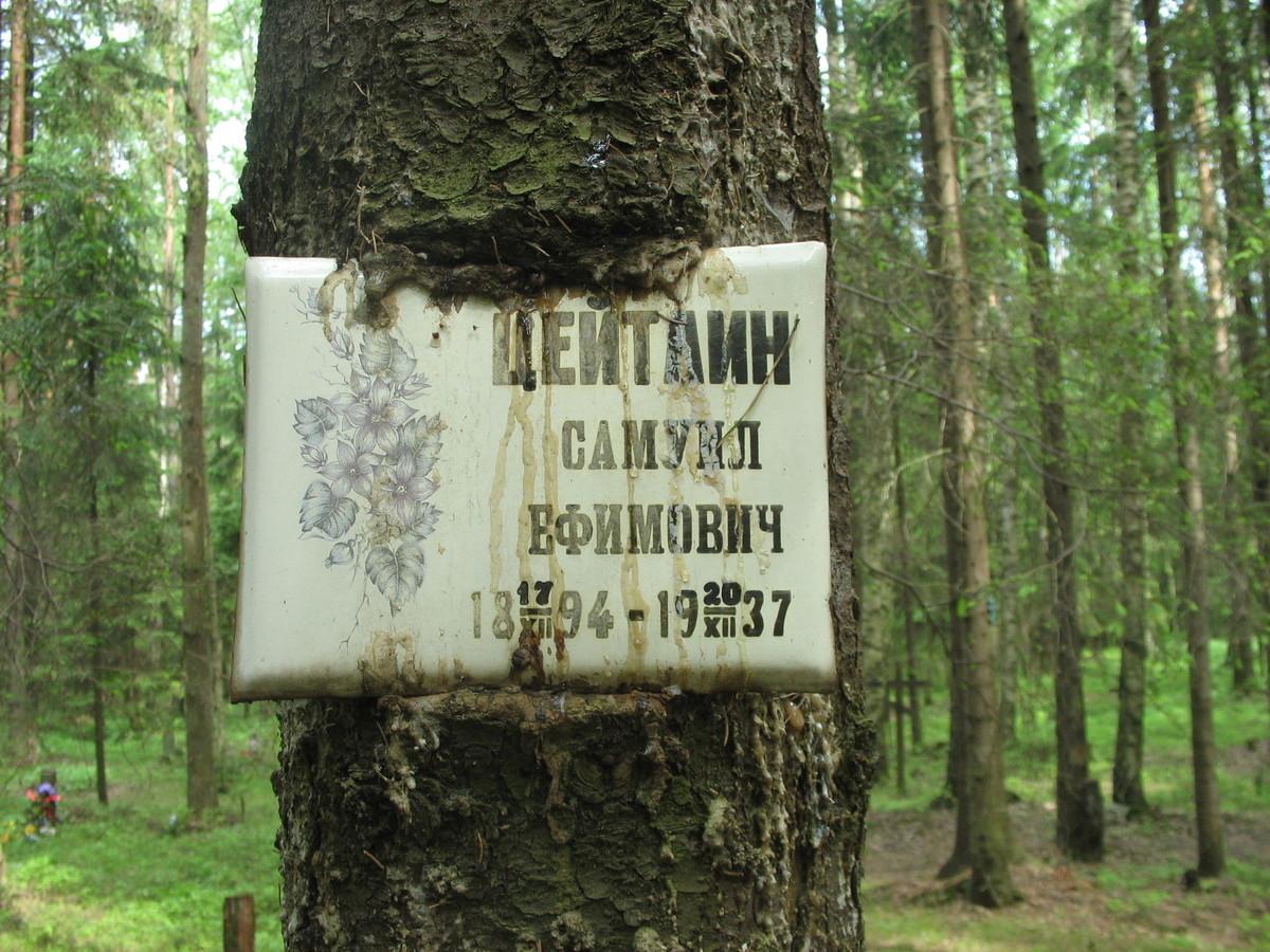 Памятная табличка С. Е. Цейтлину. Фото 06.06.2007
