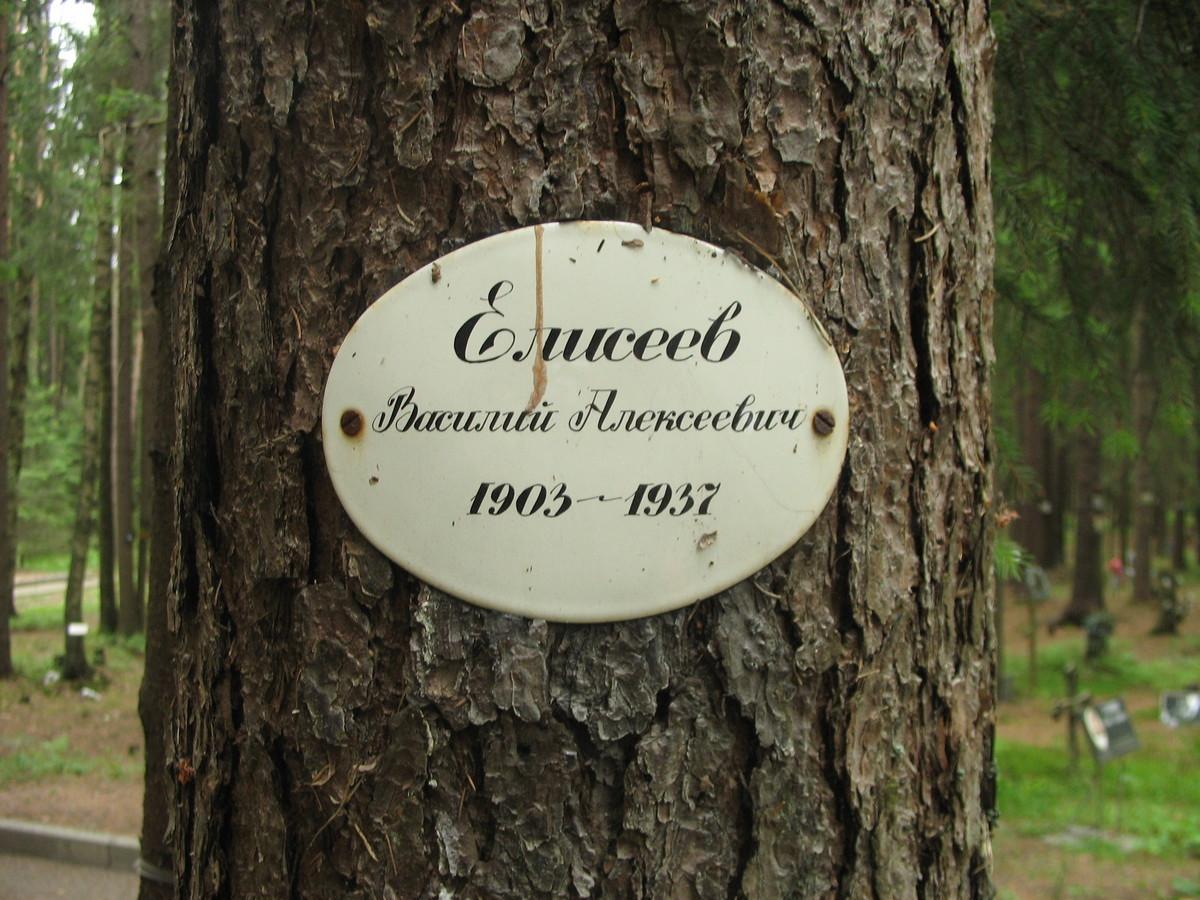 Памятная табличка В. А. Алексееву. Фото 15.06.2007