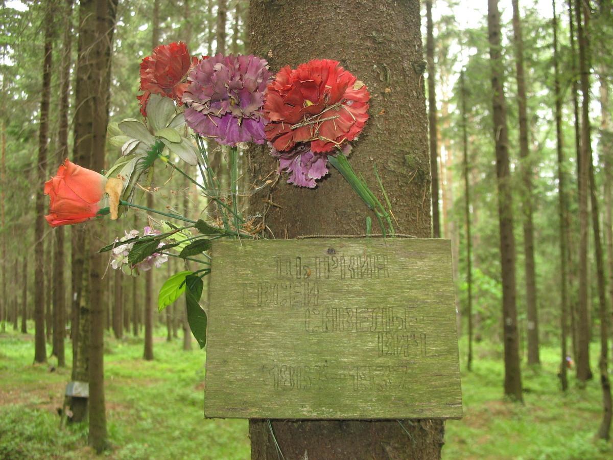 Памятная табличка Е.Г.Цыркину. Фото 15.06.2007.