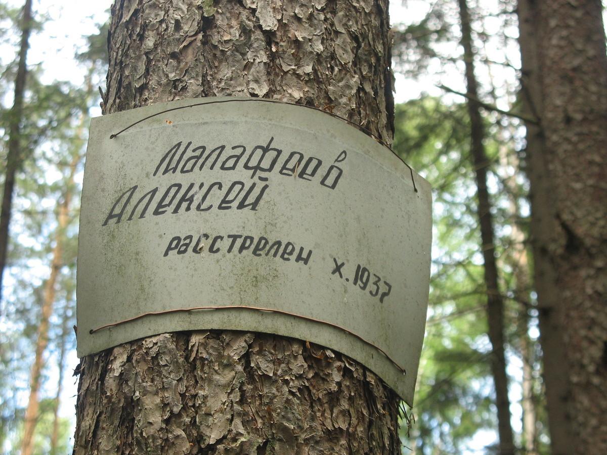 Памятная табличка А. З. Малафееву. Фото 15.06.2007